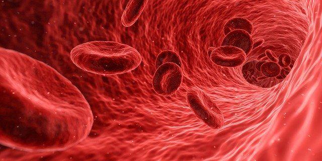4 jednoduché spôsoby, ako nakopnúť svoj imunitný systém
